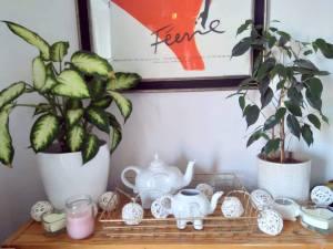 interior decor with plants